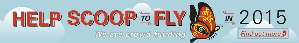 helpscoopfly